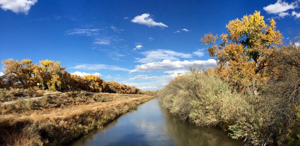River in New Mexico
